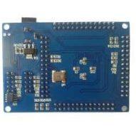 Cyclone II FPGA Board FZ0697 2 300x234